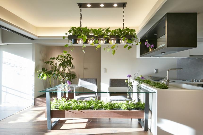 GREEN DAYSリノベーション×室内緑化で、理想の住まいを形にしていく
